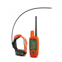 Garmin Astro 430 / T5 Mini Dog GPS Tracking and Training Bundle