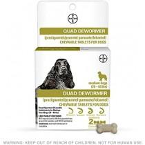 Bayer Quad Dog Dewormer Tablets