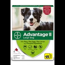 Advantage II Large Dog Flea Topical Treatment