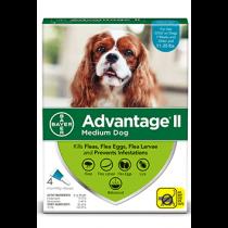 Advantage II Medium Dog Flea Topical Treatment