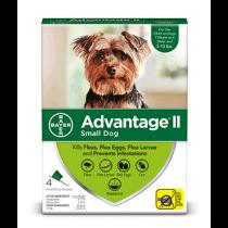 Advantage II Small Dog Flea Topical Treatment