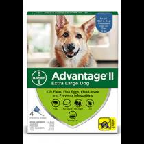 Advantage II Extra-Large Dog Flea Topical Treatment